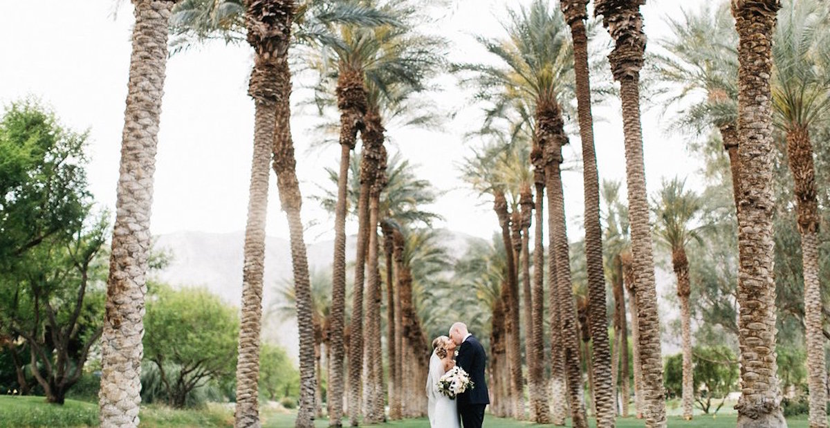 La Quinta Wedding Palm Tree Photo