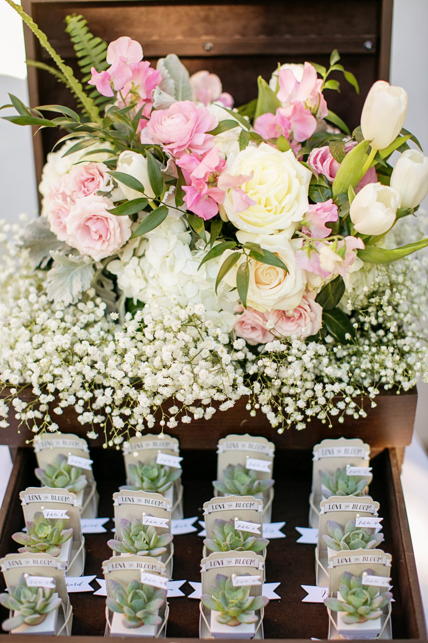 Succulent wine cork escort cards