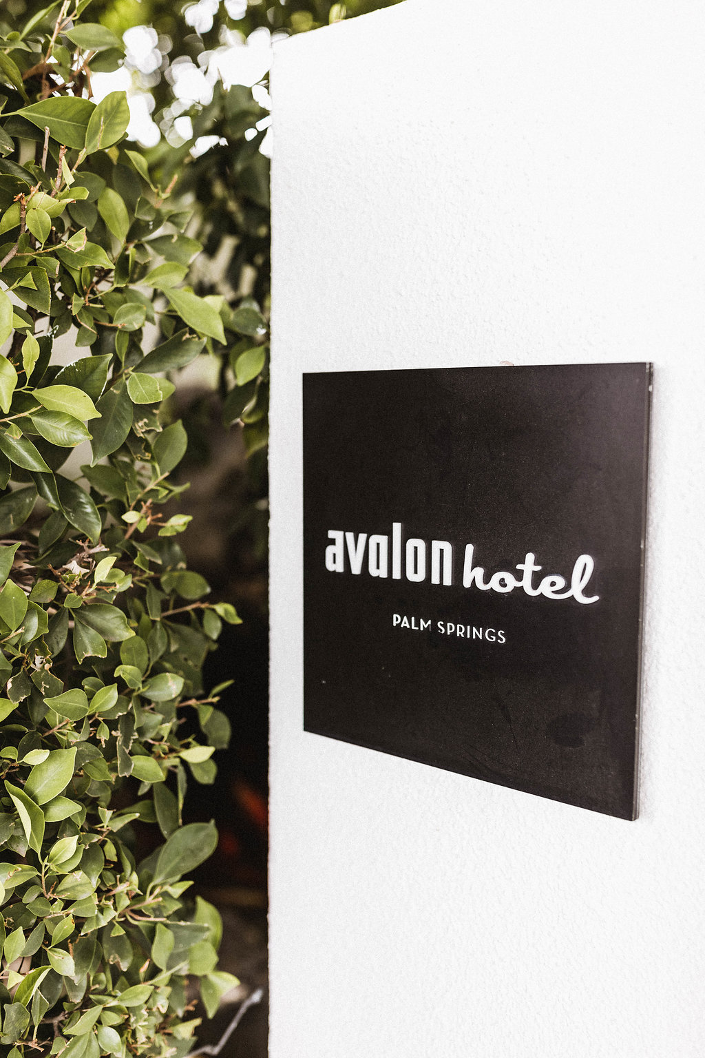 Avalon Palm Springs Wedding // Sarah Falugo Photography // Lucky Day Events Co. // Modern Desert Wedding