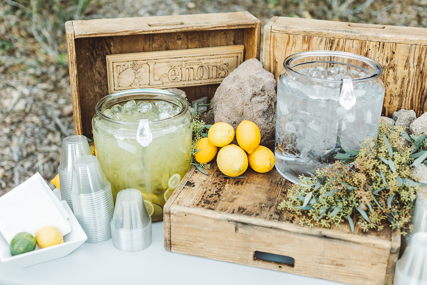 Lemonade Station